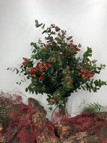 Ramo eucalipto hiperecum